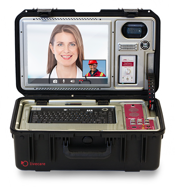 Portable telehealth case
